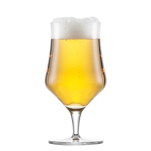 Schott Zwiesel BEER BASIC CRAFT 121390 Stem Beer Tasting Glass 300ml