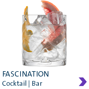 Schott Zwiesel FASCINATION Cocktail Glass Range