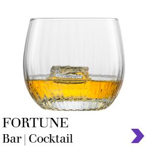 Zwiesel Glas Consumer Retail FORTUNE Bar Range Pointer