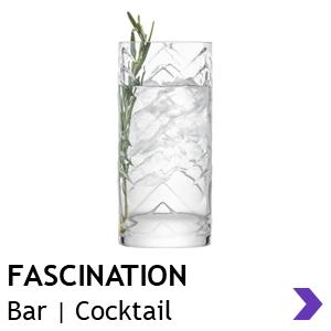 Schott Zwiesel FASCINATION Bar Glasses