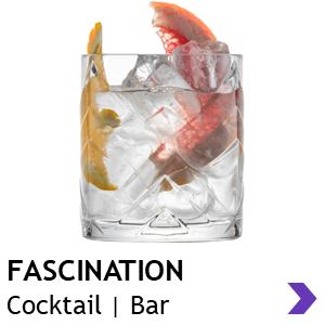 Schott Zwiesel FASCINATION Cocktail Glasses