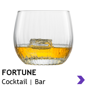 Zwiesel Glas Handmade FORTUNE Cocktail Glasses